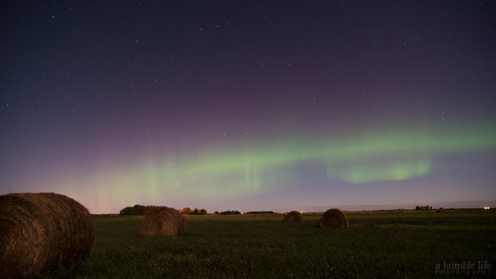 Autumn Aurora Borealis