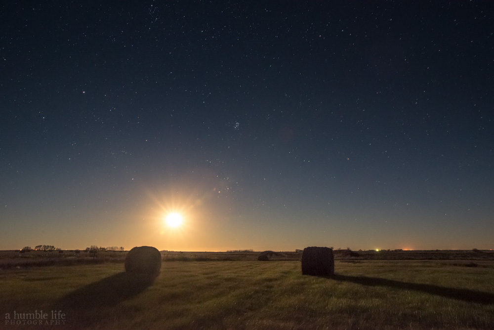 Prairie Moonrise